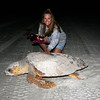 Cindy with mother loggerhead turtle at the Canaveral National Seashore