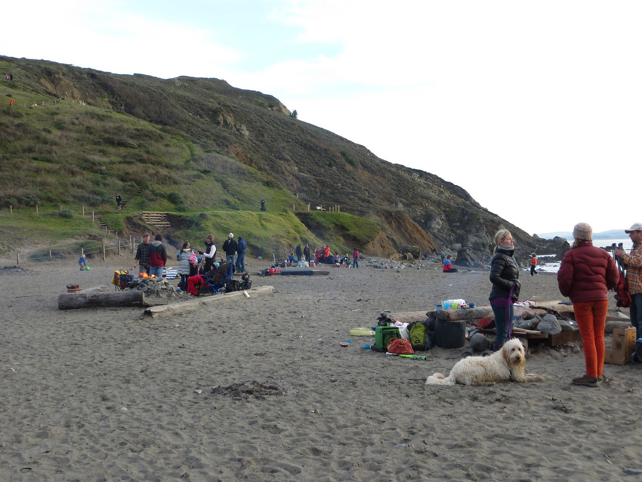 The beach was filled with people, dogs, fires etc.