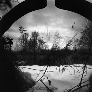 Newfane field framed by rusting plow equipment, December 29, 2008