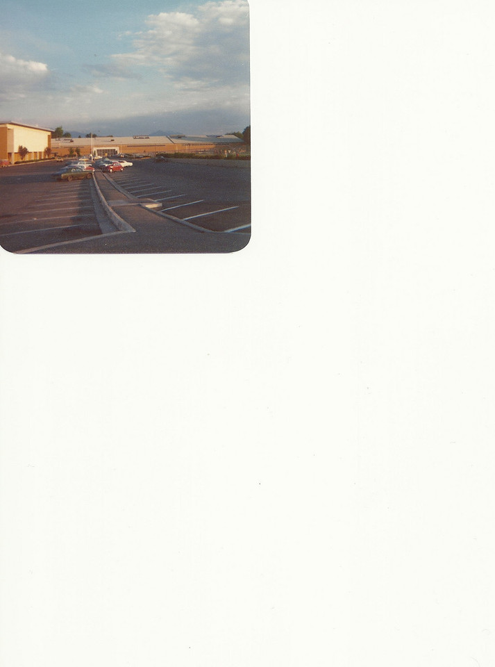 SCAN6632