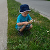 Tyler picking flowers
