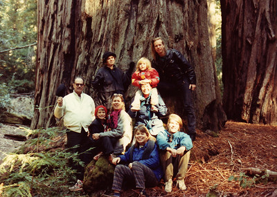 December 1990. Family reunion with Nick in Big Basin State Park, California, where there is a memorial marker for my mother.  Jean and I and all our children (Nick's grandchildren and one great-grandchild) are in this photo.