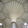 Amazing 14th century fan vaulting in the Wells Chapter House