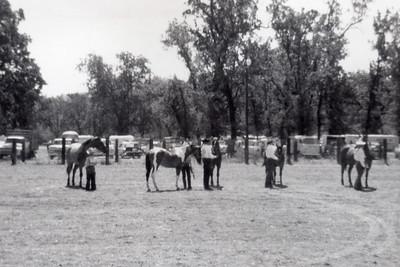 MT Days 1970 halter
