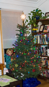 Nora and her Christmas tree