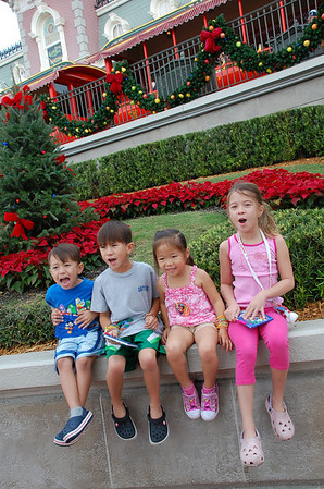 November 16, 2010 - Disney Magic Kingdom