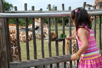 November 18, 2010 - Zoo Miami