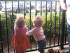 Claire and Hallie playing with the fence.