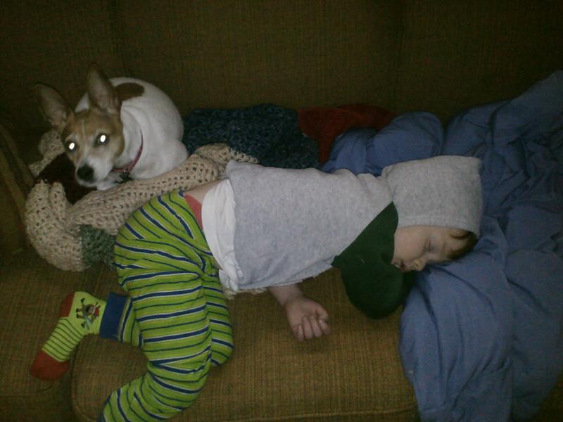 Lola watches over sleeping Mason