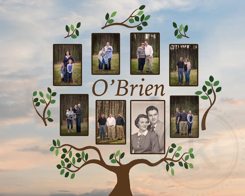OBrien Family Tree2