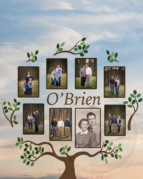 OBrien Family Tree final