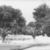 Oak Hill Park 1940?