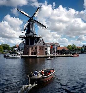 Rustic Haarlem.