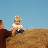 Daddy put me on the very top of the haystack!