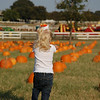 Same excited as last year when she saw thousand of pumpkins.
