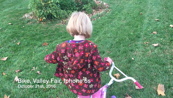 Iphone October 21st, 2016 Valley fair, bike