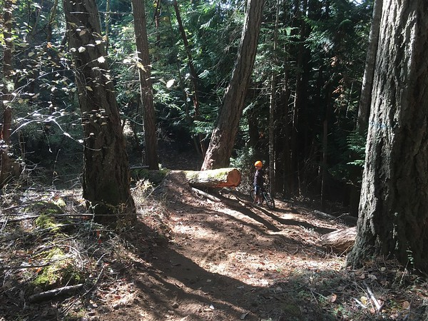 "Mtn biking San Juan Island. Kol: ""This is legit"""