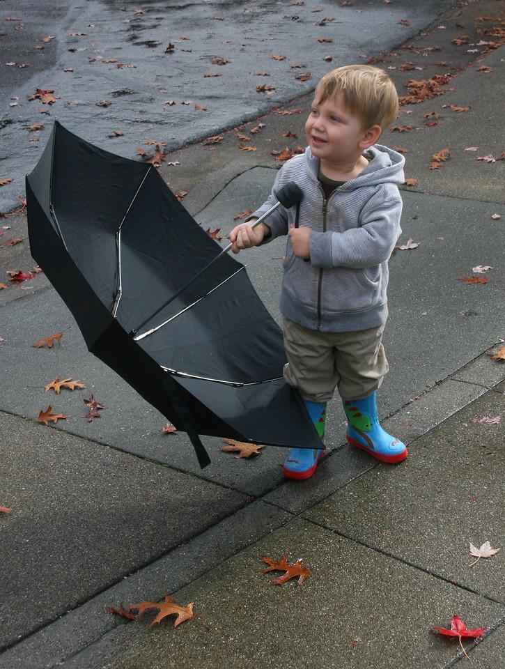 Big Umbrella for Alex