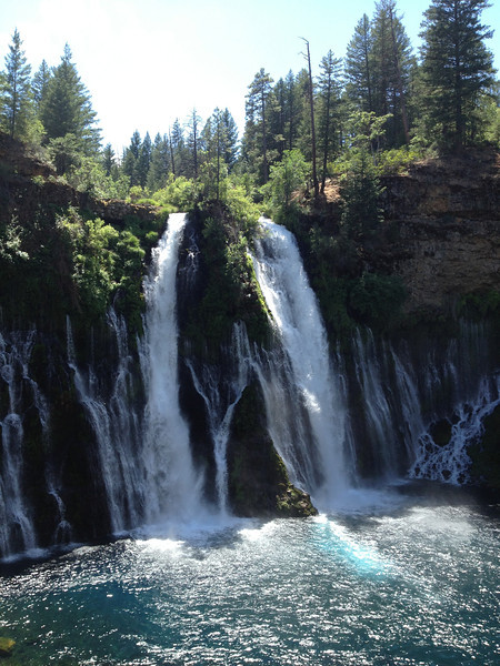 Burney Falls.  Cooper got Marina a bear at the gift shop.