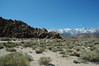 Heading west toward Mount Whitney, we stop to view some unusual rocks and a scattering of brilliant wildflowers.