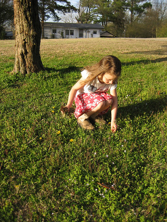 Ogdens First Quarter 2010