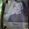 Hi Neal!