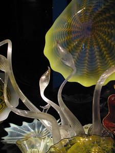 Glass Kelp