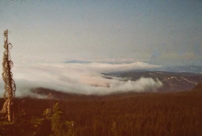 1987 Timberline Loop  2
