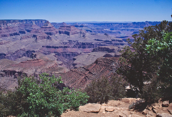 024 Grand Canyon