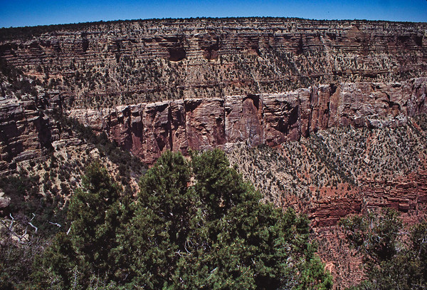 026 Grand Canyon