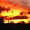 Maple House - November Sunrise