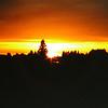 Maple House - Sunset