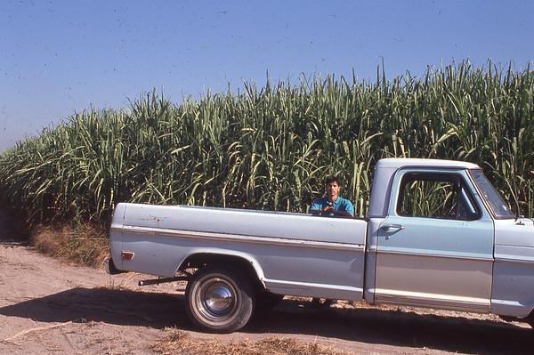 Mexico - 1992