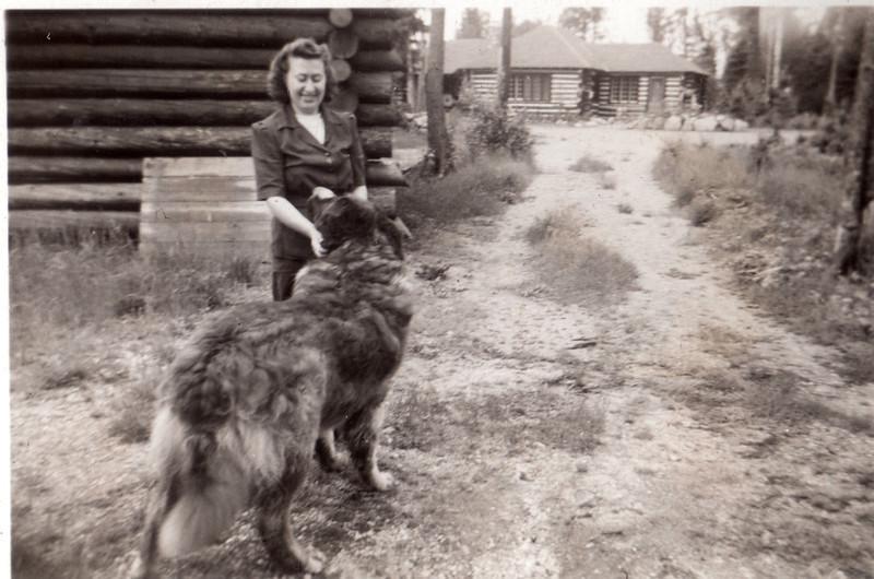 Big dog at the lodge