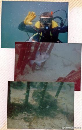 Scuba diving in Florida, commercial diver
