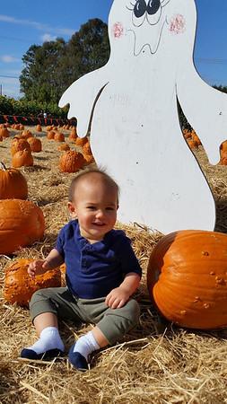 2015-10-17 Spina Farms Pumpkins