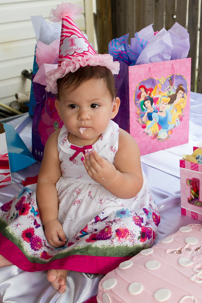 Olivia's 1st Birthday