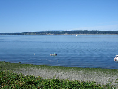 View from our place on Camano