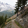 This trail provided us with breathtaking views of Mt Rainier and the surrounding valley