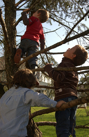Xavier, Luke & Dominic hunting for Easter eggs