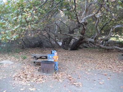 Thanksgiving at Big Sycamore Canyon/Pt Mugu 11-2009