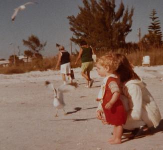 St Petersburg, FL 1979