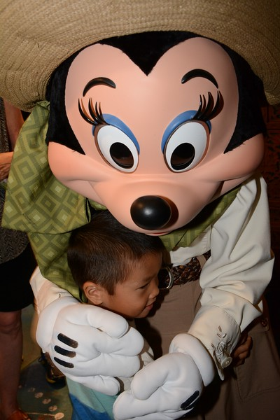 Disney Memory Maker Pix