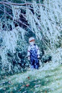 October Storm 1988