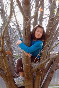 2009-01-02 Sarah on Bradford Pear tree in front yard