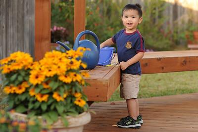 2008-11-09 In the backyard