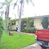 Mayi's house
