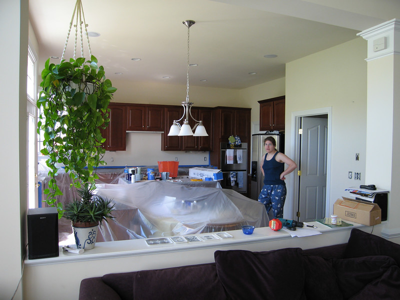 Painting the kitchen, before