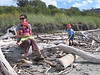"Henry insisted on ""cleaning up"" the beach by moving the driftwood upland."