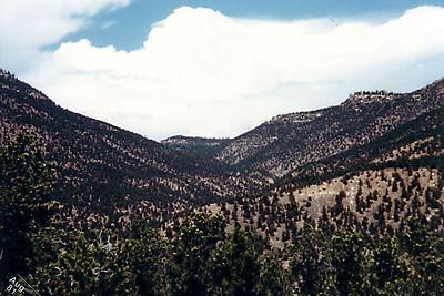 Turkey Creek Canyon